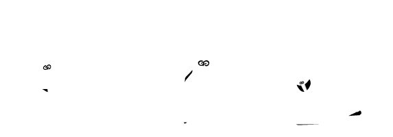 Skate classes for Longboard beginner, advanced and Pro skater. personal Skate coachings. Icon.